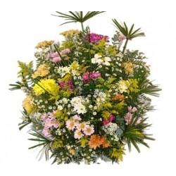 Qual o significado das flores do campo