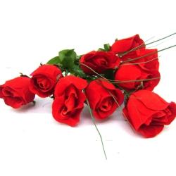 Qual o significado das rosas vermelhas
